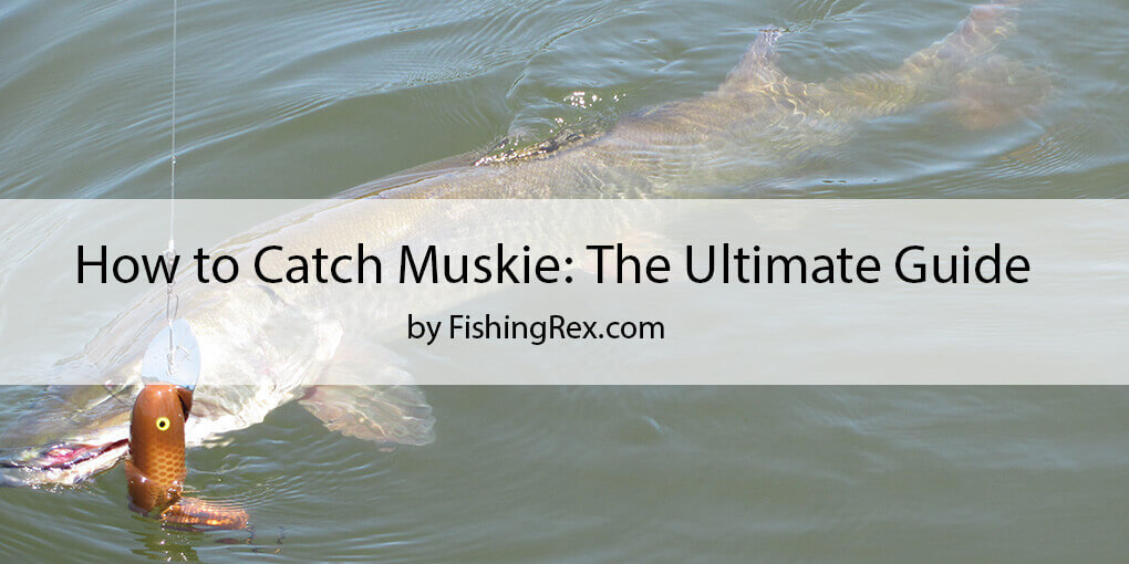 How to Catch Muskie