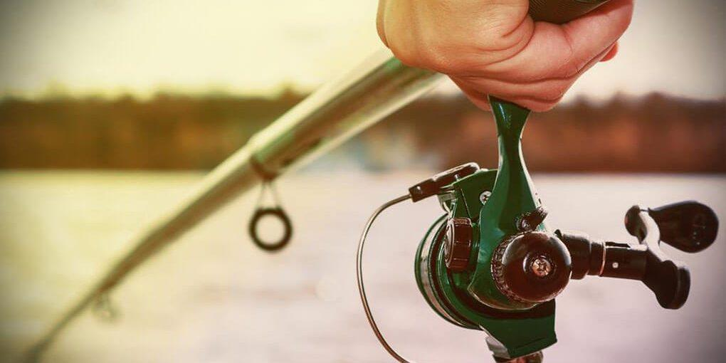 Best Spinning Reel Under 200