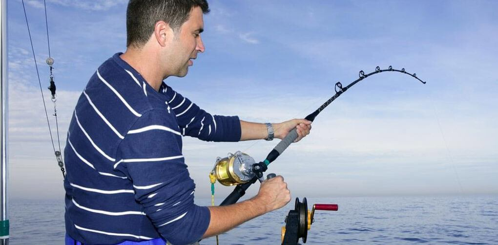 Best Spinning Reel Under 30