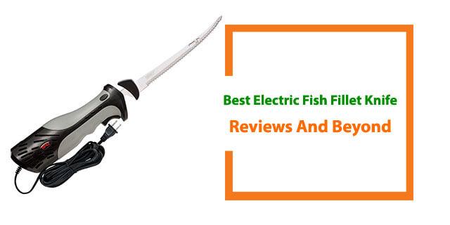 Best Electric Fish Fillet Knife