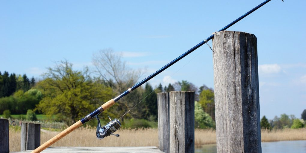 one of the best fenwick rods in the market today