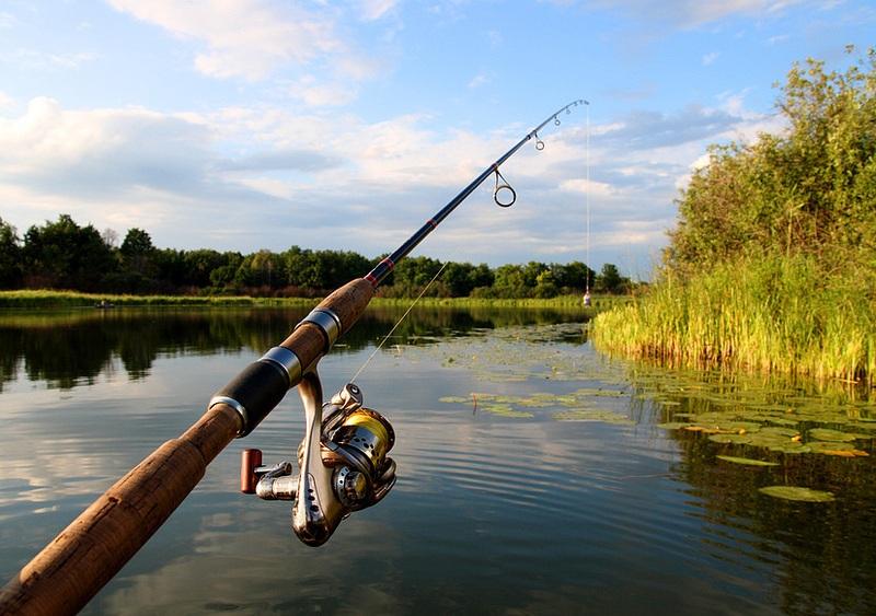 jig fishing