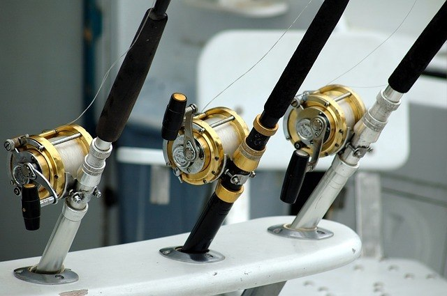 fishing gears - rods and reels