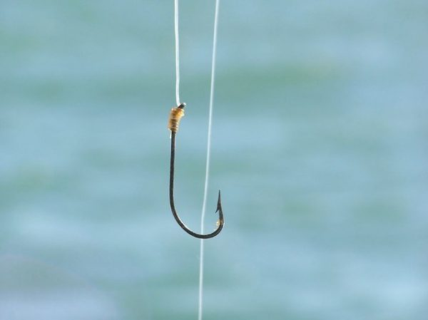fish hook with snell knot